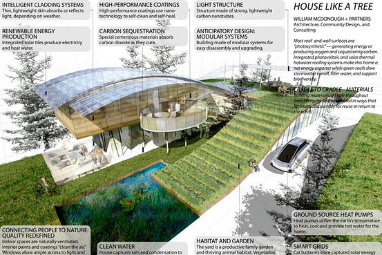 Jetson Green Four Architects Design The Green House Of